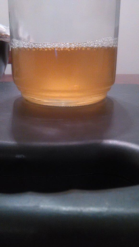 urine test in jar image