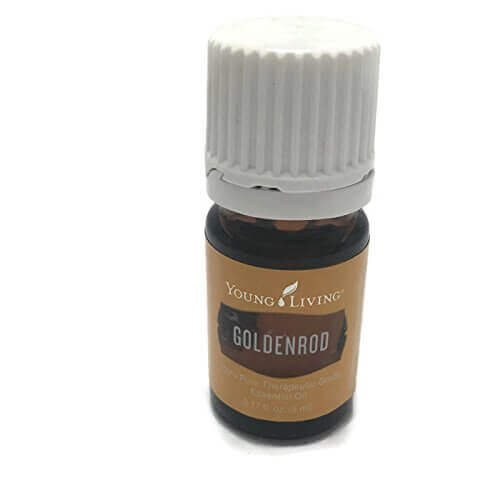 goldenrod essential oil pic